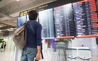 Подробно о способах получения информации о рейсе